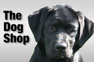 Dog products & supplies